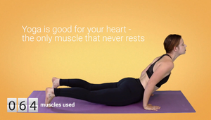 Upbeat Active - Every Muscle Matters