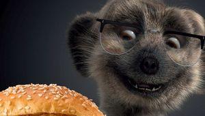 Meerkat Meals - Stills