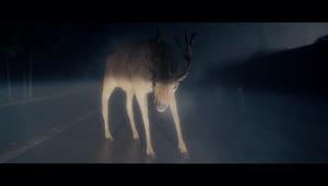 Dodge - My Deer Friend