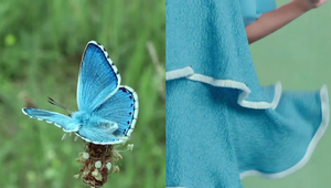 Comfort - Nature