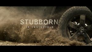 """""""Stubborn"""""""