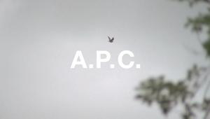 APC x Alex Reid