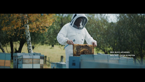 A Bee to Bee Story