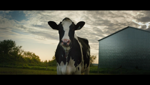 Dairy Farmers of Canada - Dairy Farming Forward