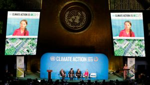 COLLECTIVE@LAIR IMMERSIVE EXPERIENCE FILMS DELIVE POWERFUL MESSAGE AT UN CLIMATE ACTION SUMMIT 2019