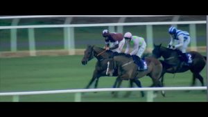 JWT Folk - Horse Racing Ireland