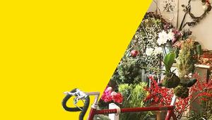 Small Business - Banner Bici&Radici