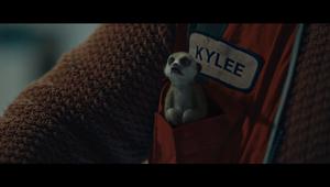 WorkSafe - Inner-Meerkats