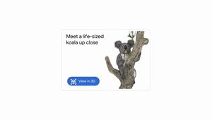 Google Launches Aussie AR Animals