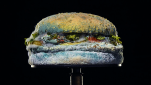 Burger King - Moldy Whopper