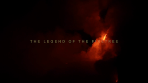 10 Days - Firetree