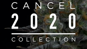 FloraCal Farms - #Cancel2020 Collection