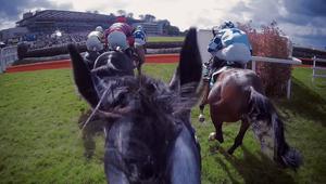Sky Bet | Horse Racing