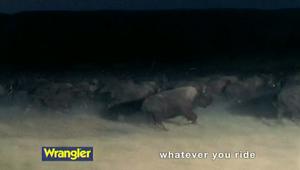 Wrangler 'Ride'
