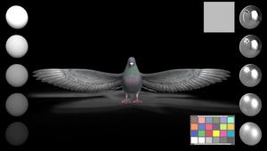 BBC Sounds - Flip Your Vibe - VFX Breakdown 2