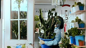 Florist Vertical Video
