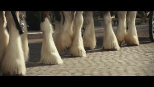 """Sam Adams """"Horses"""""""