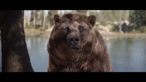 Kia - The Bear & The Eagle