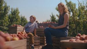 Fresh Thyme Market - Peaches